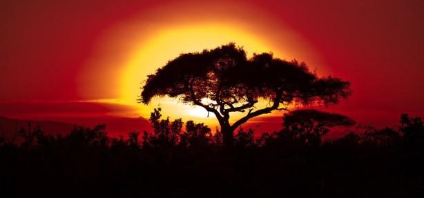 1280-africa-sunset1